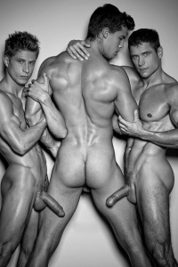 Bel Ami muscle men erected cocks